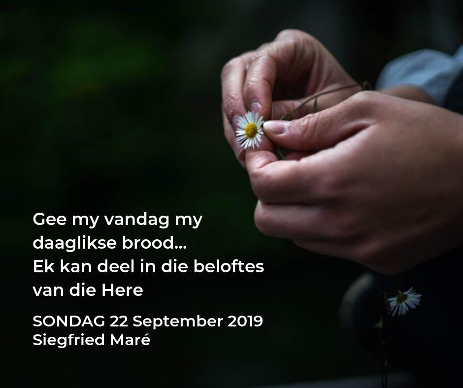 Onse Vader-preekreeks: Gee my vandag my daaglikse brood… Ek kan deel in die beloftes van die Here – 22 September 2019