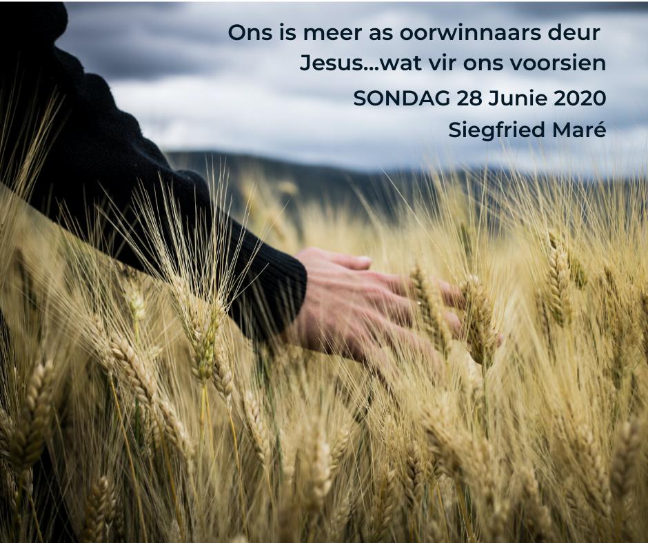 28 Junie 2020 – Ons is meer as oorwinnaars deur Jesus…wat vir ons voorsien